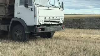 В СКО фермеры просят защитить от рейдерства