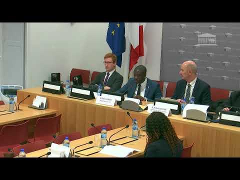 JO 2024 : Présentation du rapport pour avis en commission des Affaires économiques