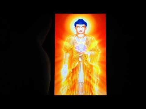 Video of Buddhism Amitabha
