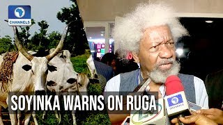 Ruga Is Going To Be An Explosive Issue - Soyinka