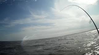 Рыболовные базы на озере ильмень