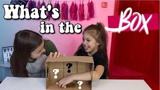 What's In The BOX Challenge | Domča Třešňáková