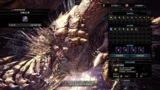 [Monster Hunter World: Iceborne]歷戰金火龍SOLO(行家風暴槍) 02:59