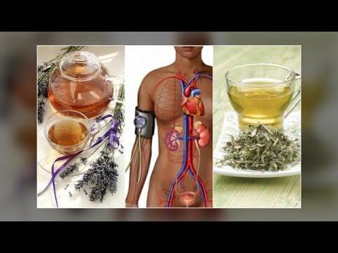 Pulmonaler Hypertonie im Bild