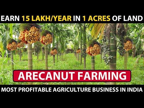 , title : 'ARECA NUT FARMING / BETEL NUT CULTIVATION | Complete information's | Supari ki Kheti Kaise Hoti Hai