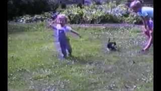 Cats vs. Kids
