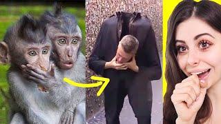 ANIMALS REACTING to Magic Tricks !