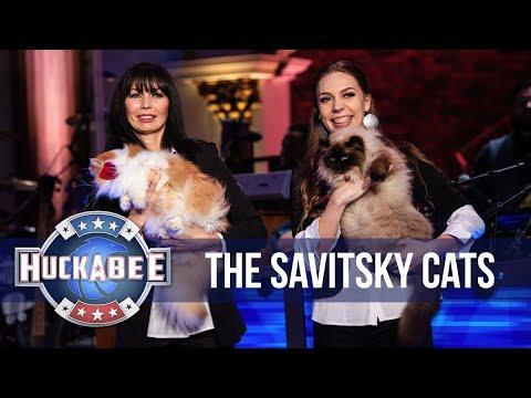 The AMAZING Acrobatic Savitsky Cats Perform | Huckabee (видео)