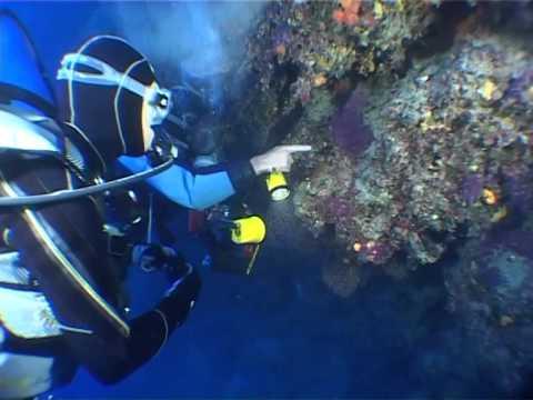 Trucchi per una perfetta illuminazione subacquea