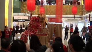 preview picture of video 'Danse du dragon à l'occasion du nouvel an chinois à Nanchang - Février 2013 3/3'