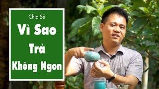 Pha Chè Tân Cương Thái Nguyên Ngon, Khó Hay Dễ?