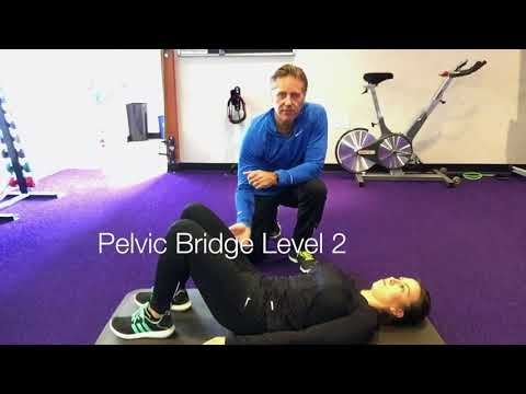 Pelvic Bridge Core