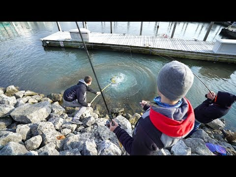 City Fishing for The Biggest Trout I've EVER Seen (Bobber Fishing Madness)