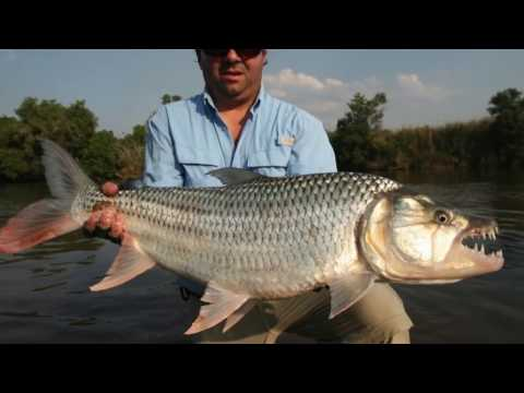 Tanzania 2012 HD