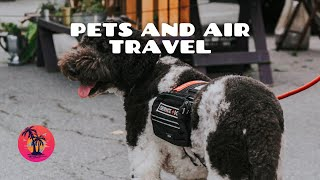 Pets and Air travel