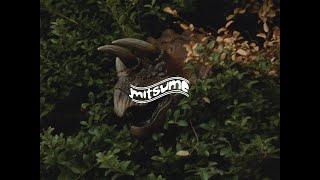 ミツメ – Basic (feat. STUTS) | mitsume – Basic (feat. STUTS) (trailer)