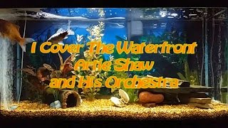 I Cover The Waterfront   Artie Shaw and His Orchestra