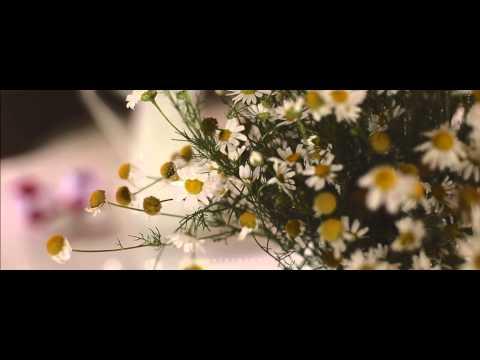 Текст песни ваенги желаю счастья вам