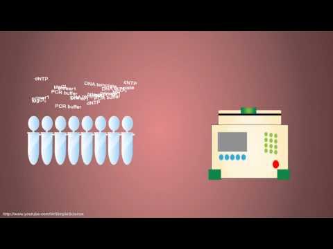 Vitaprost effetti collaterali compresse