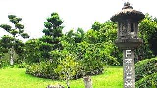 Adorable Japanese Music 💚 Traditional Koto, Shamisen, Bamboo Flute Music!