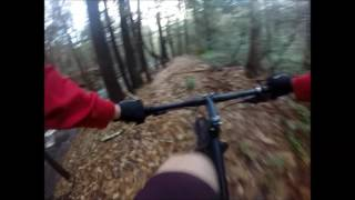 Go-Pro: Waterfall Trail, Wilton, NH