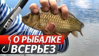 Передача о рыбалка на карася в украине