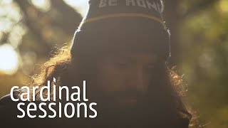 Anthony D'Amato - Honey That's Not All - CARDINAL SESSIONS