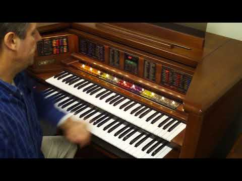 Lowery Organ 2 One Of The Demo Songs