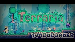 tmodloader terraria 1-3-5-3 pirata - मुफ्त ऑनलाइन