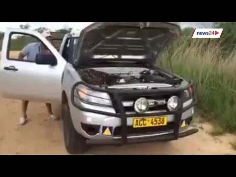 Python Hitches Ride On Engine Of Car In Zimbabwe