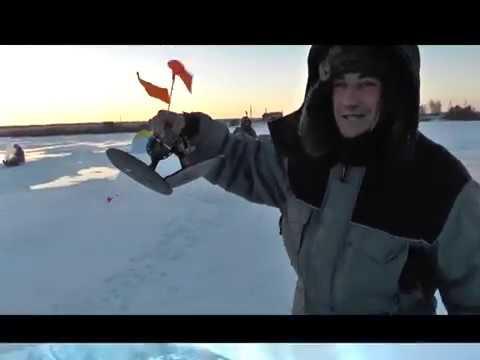 Ловля карася из-подо льда на платном пруду в селе Тростянь