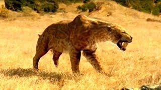 Саблезубый тигр. Доисторические хищники.Смертельная битва. Документальный фильм.