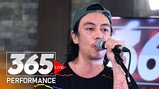 Chicosci - Buzzin' (365 Live Performance)