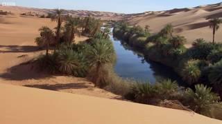 Deadly Oasis In The Sahara Desert