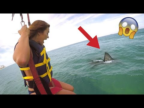 SHARK ATTACK PRANK (WIFE FREAKOUT)