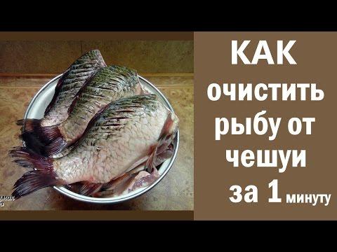 Как очистить рыбу от чешуи за 1 минуту. Быстро почистить речную рыбу
