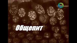 ОБЩЕПИТ ► Сделано в СССР (Документальный фильм)