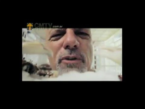 Gustavo Cordera video Entrevista CM - Marzo 2013