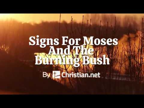 Exodus 3: Signs For Moses And The Burning Bush | Bible Story (2020)