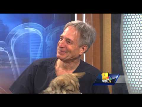 Video Pet Questions: Auto-immune disease issues