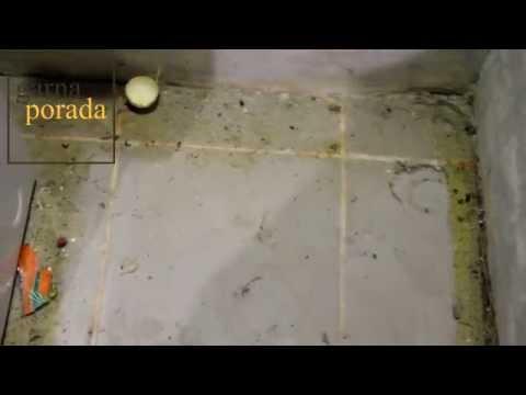Как очистить отмыть плитку (кафель) на кухне за 5 минут