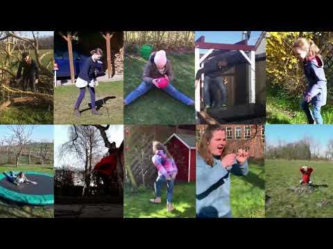 Youtube-Video Frerk, Du Zwerg!