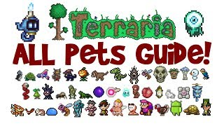 Terraria ALL Pets  Light Pets Guide! All platforms! (1.2.4 AND 1.3+, PC/console/mobile)