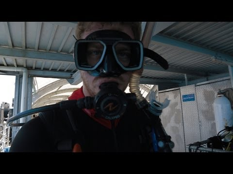 VlogGully 2: The Magical Rescue (Great Barrier Reef, Scuba Diving, and Fish Jokes)