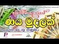 Online Loan Srilanka - Internet Money Loan cashwagon finpal cashray