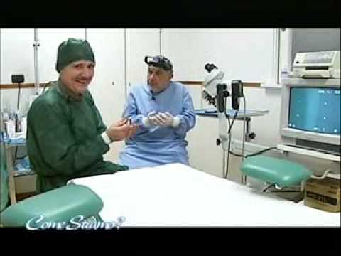 Il cancro alla prostata di grado 3 dieta