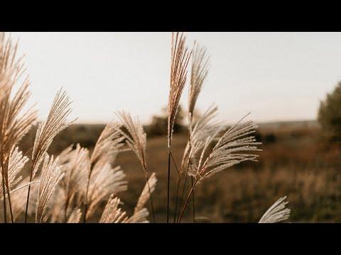 Літепло, відео 3
