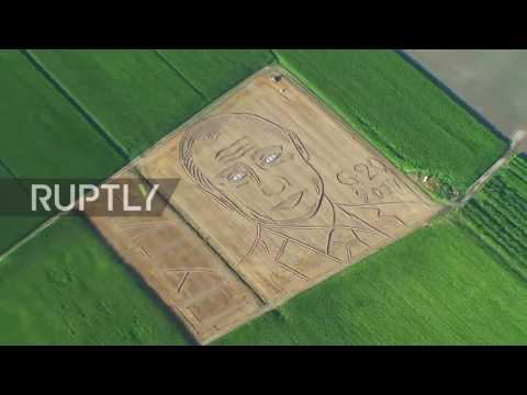 """""""С надеждой на решение актуальных проблем"""": В преддверии саммита G20 итальянский фермер нарисовал на участке портрет Путина"""