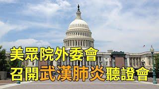 【直播回放】美國眾議院外委會召開武漢肺炎聽証會(中文同聲翻譯)