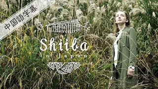 Shiba in Japan(中国語)